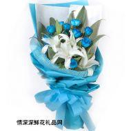蓝色妖姬,蓝魅