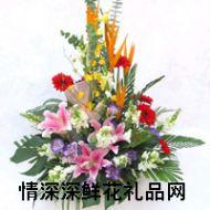 上海�r花,新年祝福
