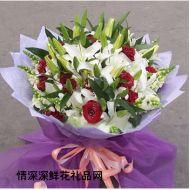 祝福鲜花,喜悦的心情