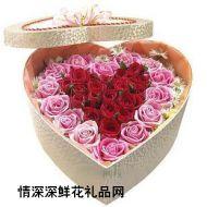 情人节鲜花,火热之恋