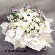 清明节鲜花,素雅