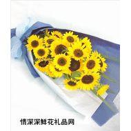 重庆鲜花,风采