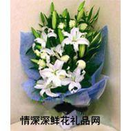 友情鲜花,快乐百合