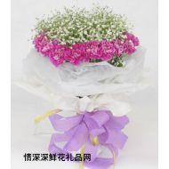 VIP鲜花,桃色情怀