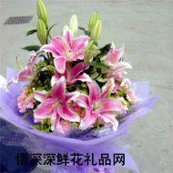 贵阳鲜花,美丽心情