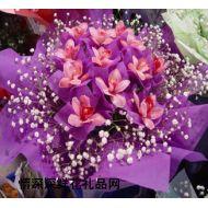 深圳鲜花,风花雪月