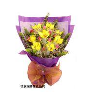 花惠兰,紫色花情