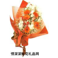 商务鲜花,艳阳高照