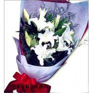 亲情鲜花,浪漫传说
