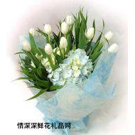 元旦鲜花,甜蜜的回忆
