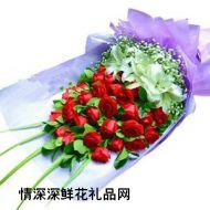 情人节鲜花,温情冬日