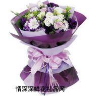 爱情鲜花,紫色诱惑