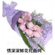 友情鲜花,柔柔而高贵