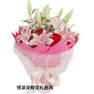 百合花,温馨的爱