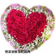 亲情鲜花,永远的天使