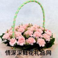 亲情鲜花,感恩母亲