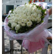玫瑰花,天天想你(实拍图片)