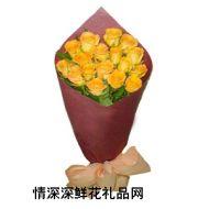 道歉鲜花,美丽的情感