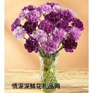 教师节鲜花,紫色梦幻 教师节祝福