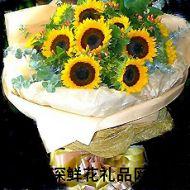 向日葵,心中的太�