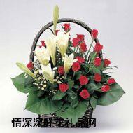 北京鲜花,童年的梦