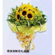 向日葵,珍惜友谊